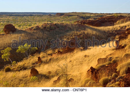 Ngumban Cliffs - view towards the terraced red cliffs from Ngumban Cliffs Lookout at late evening, Australia, Western - Stock Photo