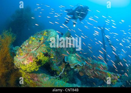 A Japanese Maru warship sunk during during World War 2, Morovo Lagoon, Solomon Islands. - Stock Photo