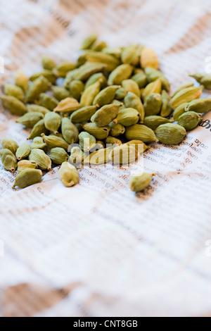 Cardamom pods - Stock Photo
