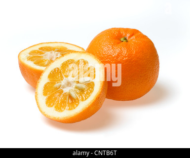 seville oranges - Stock Photo