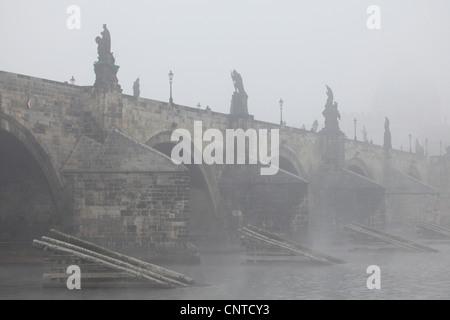 Morning fog over the Charles Bridge in Prague, Czech Republic. - Stock Photo