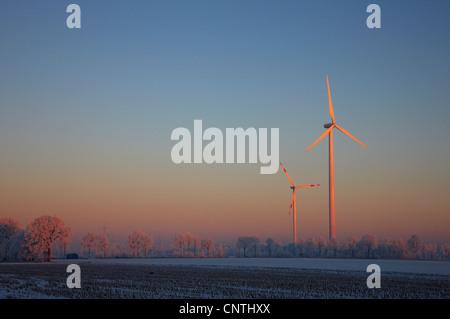 winter morning in the Muensterland with wind wheels, Germany, North Rhine-Westphalia, Steinfurt - Stock Photo