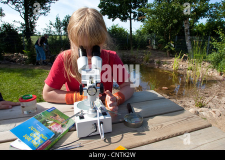 primary school pupil watching animals caught in the self-built pond in the school garden through a microscope - Stock Photo
