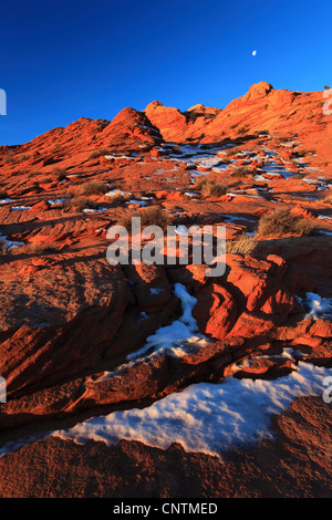 Coyote Buttes North in winter in the evening, USA, Arizona, Coyote Buttes North, Page - Stock Photo