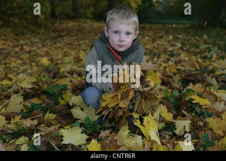 Boy playing in autumn leaves - Stock Photo