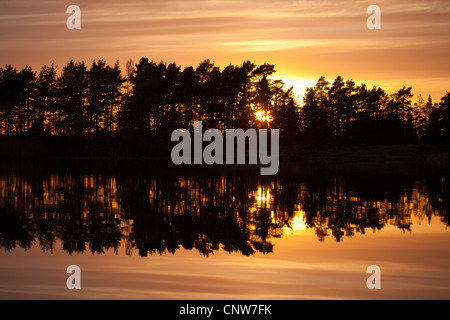 Forest, sunset and reflections in the lake Vansjø in Østfold, Norway. Vansjø is a part of the water system called - Stock Photo