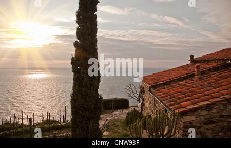 House overlooking coastline - Stock Photo