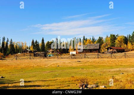 cabins in Chilcotin Country between Williams Lake and coastal mountain range, Canada, British Columbia, Bella Coola - Stock Photo