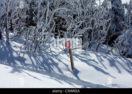 cross-country ski run disclosed by a sign in a snowy landscape at the Schwarzwaldhochstrasse, Germany, Baden-Wuerttemberg, - Stock Photo