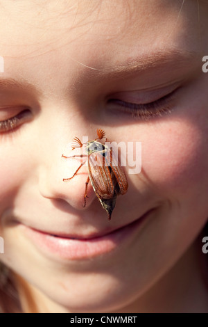 common cockchafer, maybug (Melolontha melolontha), sitting on a girl's nose, Germany
