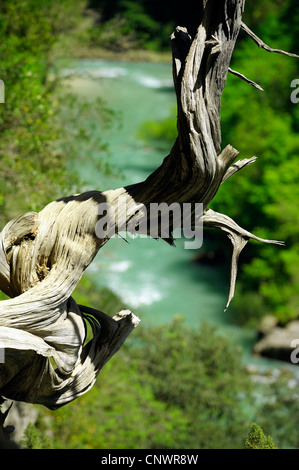 canyon of Verdon in south east of France, France, Provence - Stock Photo