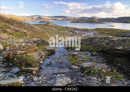 Hardangervidda in summer time, colored river (Norway) - Stock Photo