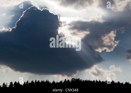 dark clouds over a forest, Austria - Stock Photo