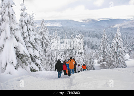 hiking group walking through a snow-covered forest landscape, Germany, North Rhine-Westphalia, Sauerland - Stock Photo