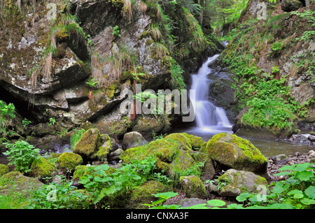 waterfall in the Hoellental gorge, Germany, Baden-Wuerttemberg, Black Forest - Stock Photo