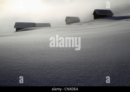Four log cabins on smooth snowy landscape - Stock Photo