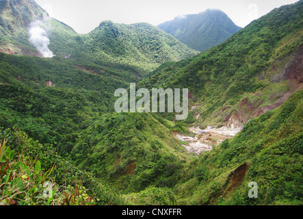 The Valley of Desolation and the steaming Boiling Lake in the distance on the mountainous island of Dominica in - Stock Photo