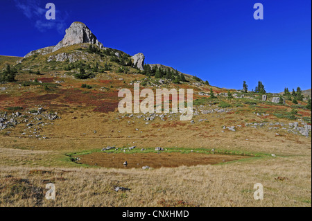 mountain panorama with pond in rough pastures in front of looming mountain top, Montenegro, Biogradska Gora National - Stock Photo