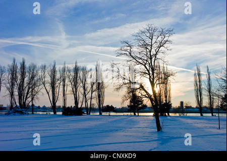 winter scenery of Bahrsplate, Germany, Bremen, Blumenthal - Stock Photo