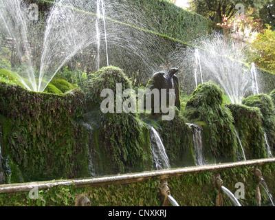 The One Hundred Fountains, Villa d'Este, Tivoli - Stock Photo