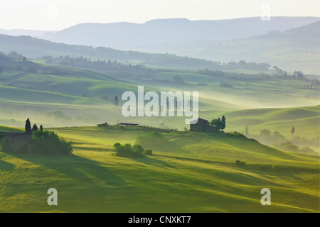 hilly landscape in early morning mist, Italy, Tuscany - Stock Photo