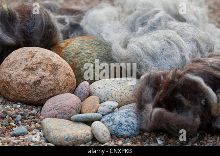 'felt stone trolls' serving as garden decoration: natural stones being equipped with caps of felted wool, Germany - Stock Photo