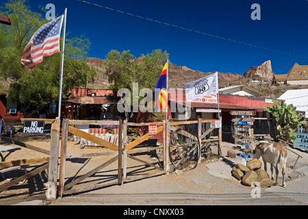 gold mining town Oatman beside historic Route 66, USA, Arizona, Oatman - Stock Photo