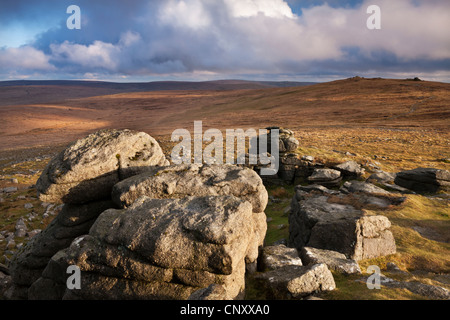 High Willhays, the highest summit in Southern Britain, viewed from Yes Tor, Dartmoor, Devon, England. Spring (April) - Stock Photo
