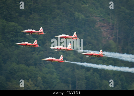Patrouille Suisse with Tiger jets during an airshow in Mollis 2009, Switzerland - Stock Photo