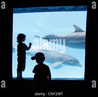 two little children standing in front of a window of a dolphinarium - Stock Photo