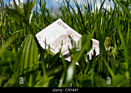 10 euro bank note laying in long green grass - Stock Photo