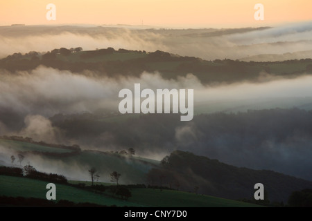 Mist hangs low over the open countryside at dawn, Exmoor National Park, Somerset, England - Stock Photo