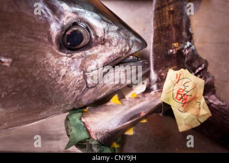 Scenes from inside the Shiogama fish market, in Shiogama town, near Ishinomaki, on the Miyagi coastline of Japan - Stock Photo