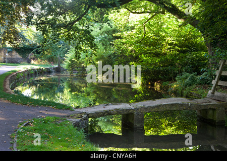 Stone footbridge over the River Eye in the Cotswolds village of Lower Slaughter, Gloucestershire, England. Summer - Stock Photo