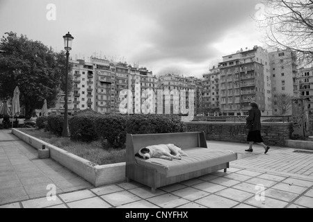 Stray dog sleeping on couch,Navarinou square ,Thessaloniki,Greece - Stock Photo