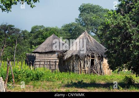 thatched huts of a village near Tsodilo, Botswana - Stock Photo