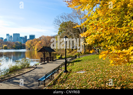 Fall leaves at the Lake in Central Park, New York City in Autumn - Stock Photo