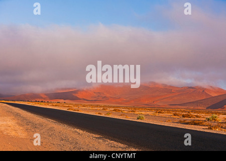road and red dunes of the Sossusvlei, Namibia, Namib Naukluft National Park, Barren Country - Stock Photo
