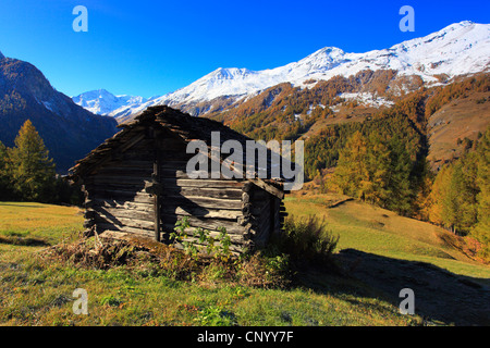 log cabin in a meadow at the Val dHrens, Switzerland, Valais - Stock Photo