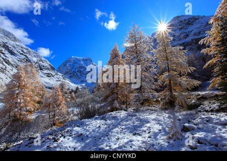 snowy mountain scenery with Mount Collon, Arolla valley, Switzerland, Valais - Stock Photo