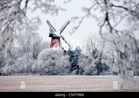 Reitbrook Mill in landscape covered with hoar frost, Germany, Reitbrook, Hamburg - Stock Photo