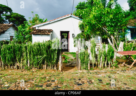 Typical house in the cuban countryside - Stock Photo