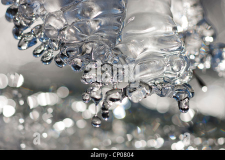 ice at the creek, Germany, Rhineland-Palatinate, Niederfischbach Stock Photo