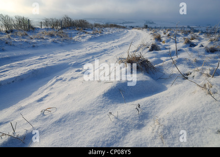 Winter morning scene of a farm track on the Marlborough Downs with fresh windswept snow on the ground and cloudy - Stock Photo