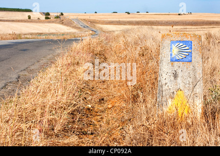 stony direction sign at the Way of St. James between Calzadilla de los Hermanillos and Reliegos, Spain, Kastilien - Stock Photo