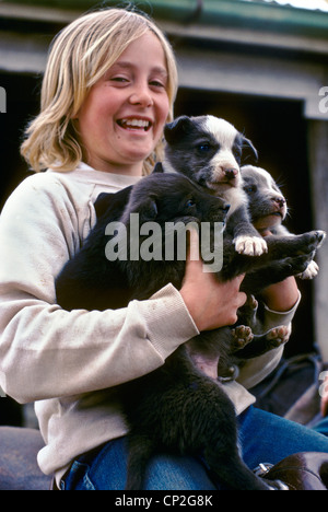 Young girl with puppies, Australia - Stock Photo