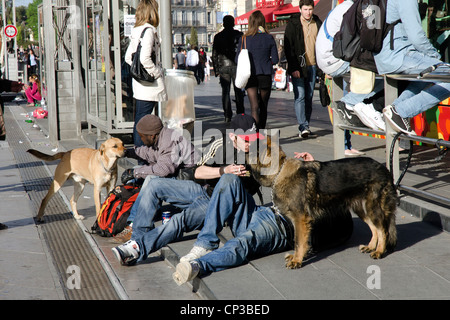 Travellers with their dogs in the center of Montpellier at tramway stop. - Stock Photo