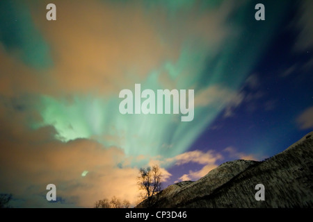 Aurora borealis or northern lights moving across night sky within the Arctic Circle Tromso Troms  region norway - Stock Photo