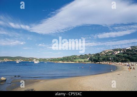 Sardinia - Costa Smeralda - Beach Smooth Cow. - Stock Photo