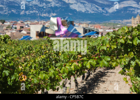 Spain, La Rioja Area, Alava Province, Elciego, elevated town view and Hotel Marques de Riscal, designed by Architect - Stock Photo